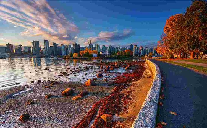 加拿大快速移民如何办理?600额外加分是关键