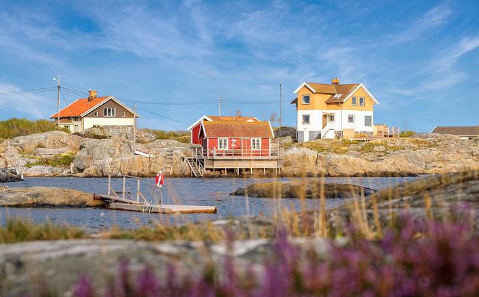 瑞典成为全球教育典范,其优质免费教育体系有哪些特点?