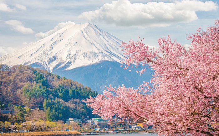 许多国人因为医疗移民日本,日本的医疗到底好在哪里?