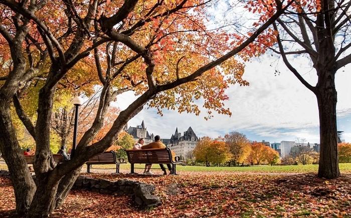 海外博士不如专科文凭,加拿大移民专业不匹配