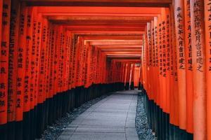 日本移民签证合集,哪些签证可以留在日本?