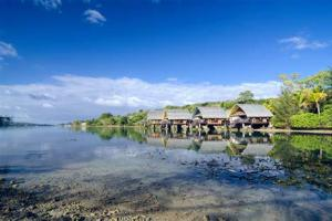 瓦努阿图移民,选择专业公司申请手续