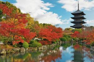 东京奥运会或将延期或取消?日本政府否认!