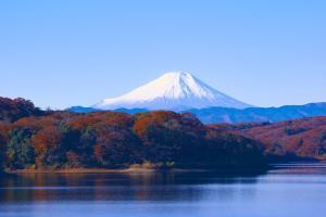 在日本经营的企业亏损了,还能续签经营管理签证吗?