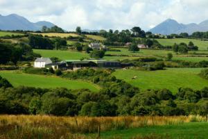 爱尔兰及希腊居留许可自动延期