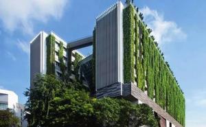 深入解读新加坡入学和升学途径