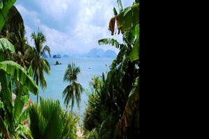 中国可以移民到泰国吗?需要哪些条件和花费